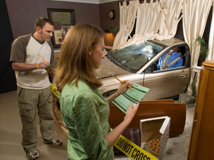 CSI: The Experience®